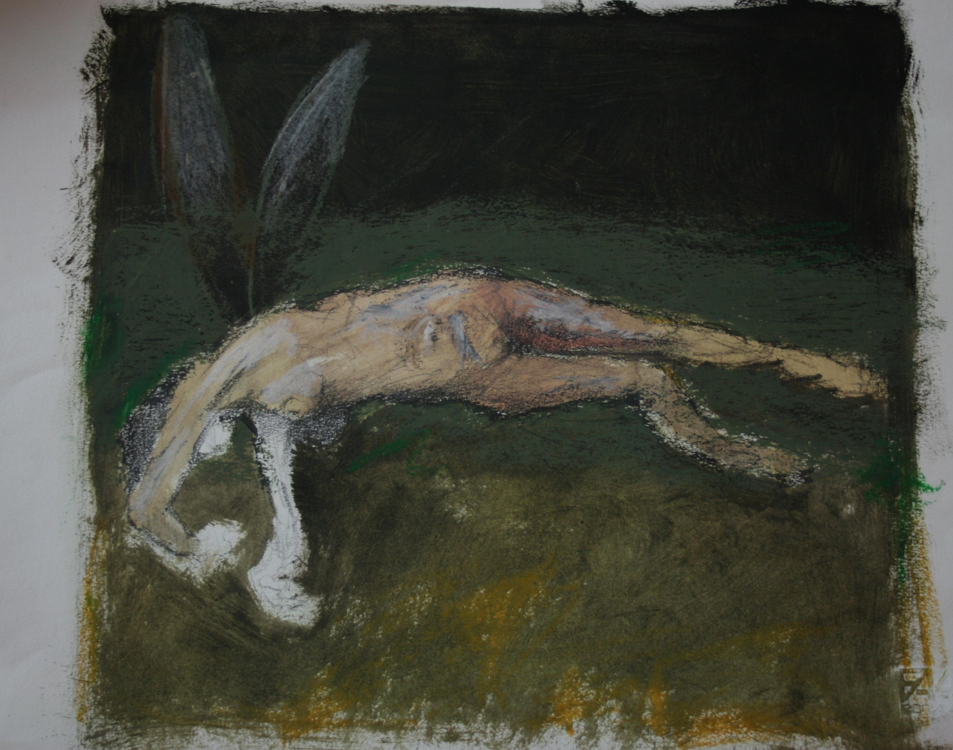 Davide Puma