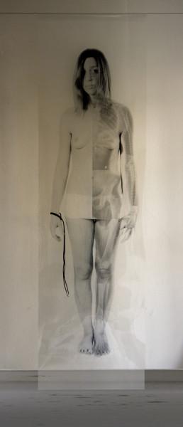 Giancarlo Marcali San Sebastiano Istallazione, 2013 Radiografie, cm. 180x60x20