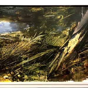 I racconti del bosco - Antonio Pedretti